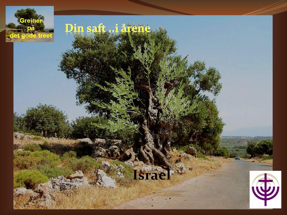 Israel Greiner på det gode treet