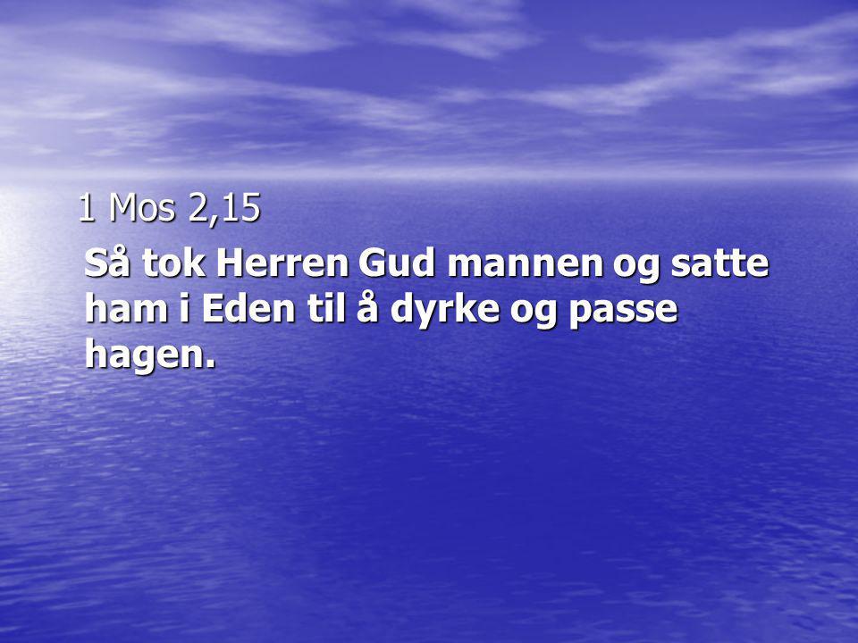 1 Mos 2,15 1 Mos 2,15 Så tok Herren Gud mannen og satte ham i Eden til å dyrke og passe hagen.