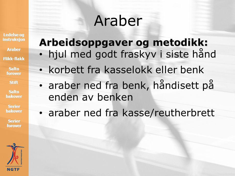 Teknikk: Teknikk: • ved flikk-flakk skal armene ligge parallelt med lårene • ved salto skal armene være i forlengelse av overkroppen Araber Flikk-flak