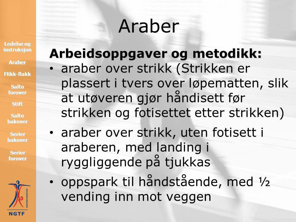 Arbeidsoppgaver og metodikk: • hjul med godt fraskyv i siste hånd • korbett fra kasselokk eller benk • araber ned fra benk, håndisett på enden av benk