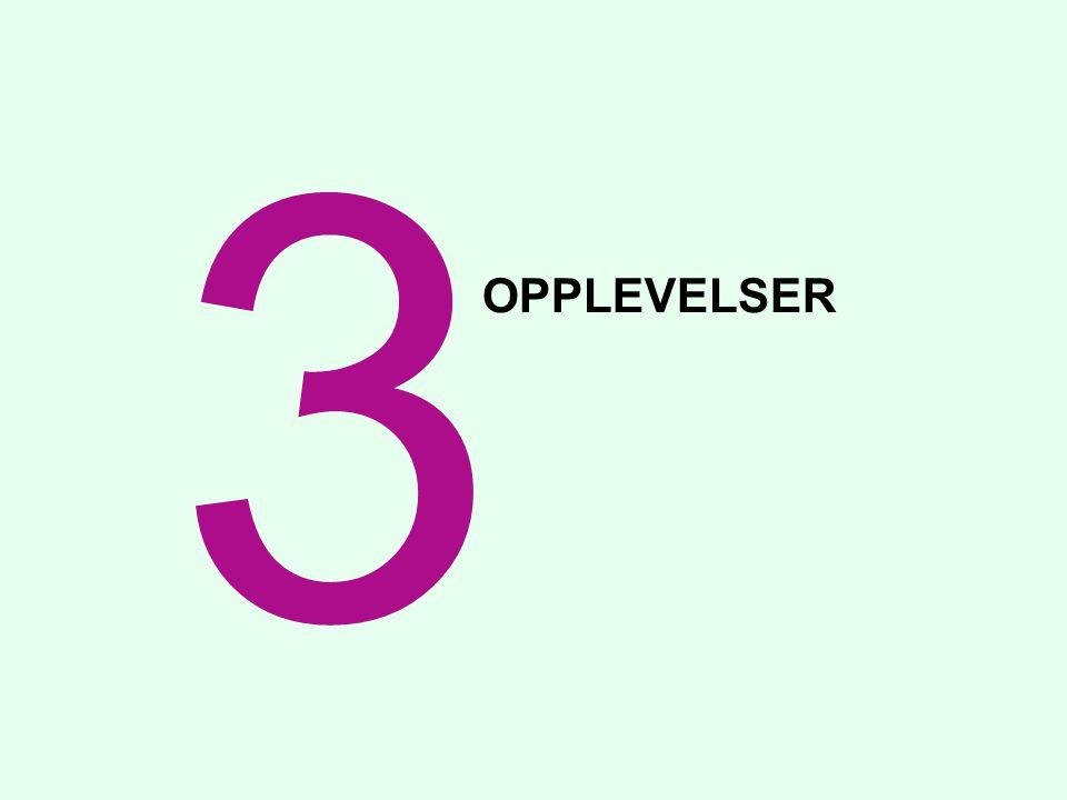 OPPLEVELSER 3