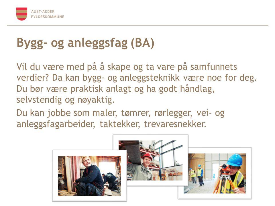 Bygg- og anleggsfag (BA) Vil du være med på å skape og ta vare på samfunnets verdier.