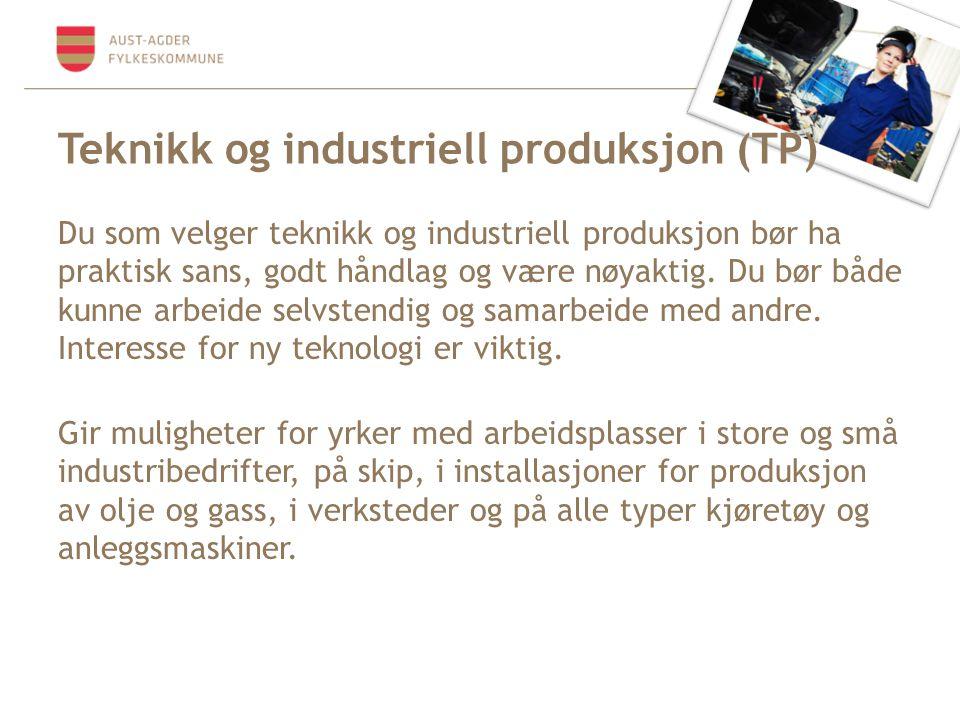 Teknikk og industriell produksjon (TP) Du som velger teknikk og industriell produksjon bør ha praktisk sans, godt håndlag og være nøyaktig.