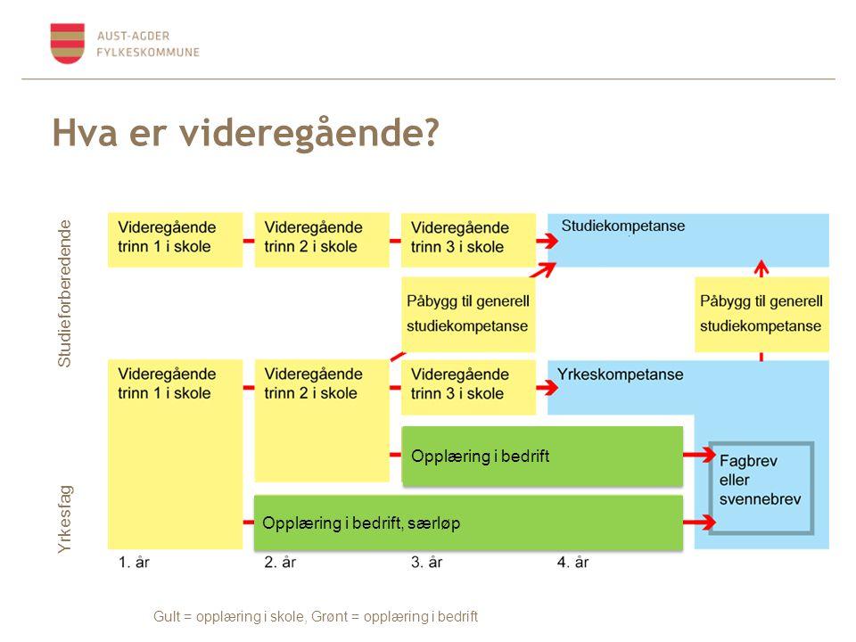 Hva er videregående? Gult = opplæring i skole, Grønt = opplæring i bedrift Yrkesfag Studieforberedende Opplæring i bedrift Opplæring i bedrift, særløp