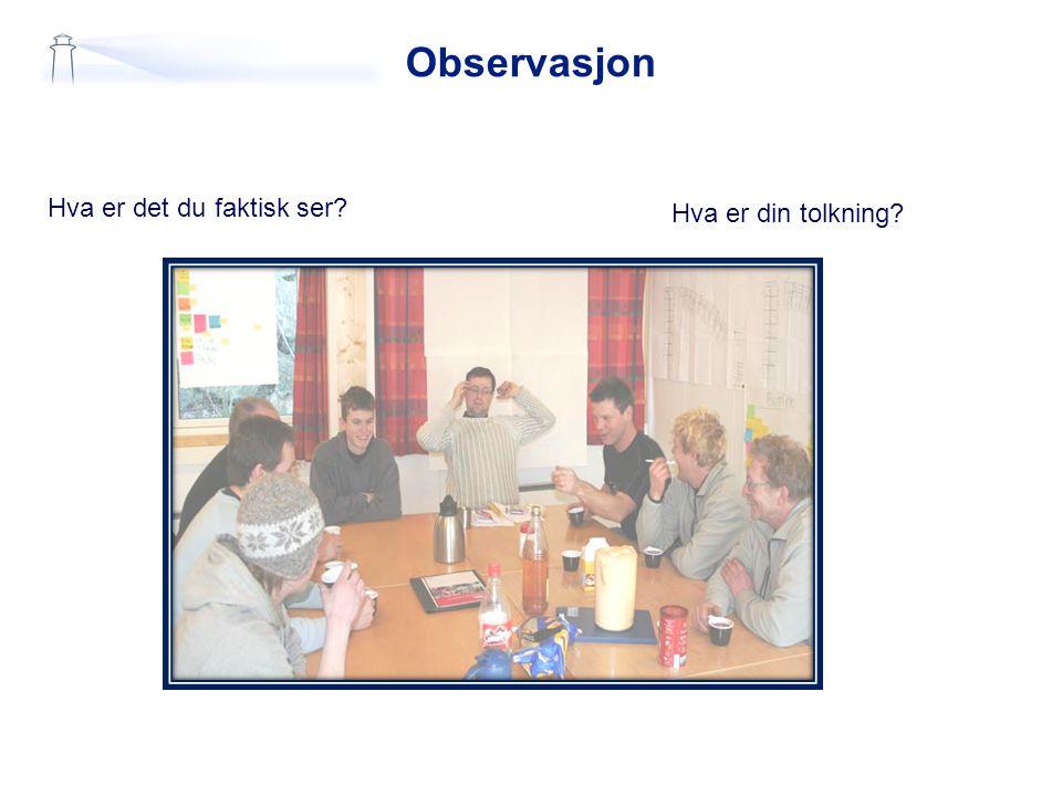 Observasjon Hva er det du faktisk ser? Hva er din tolkning?