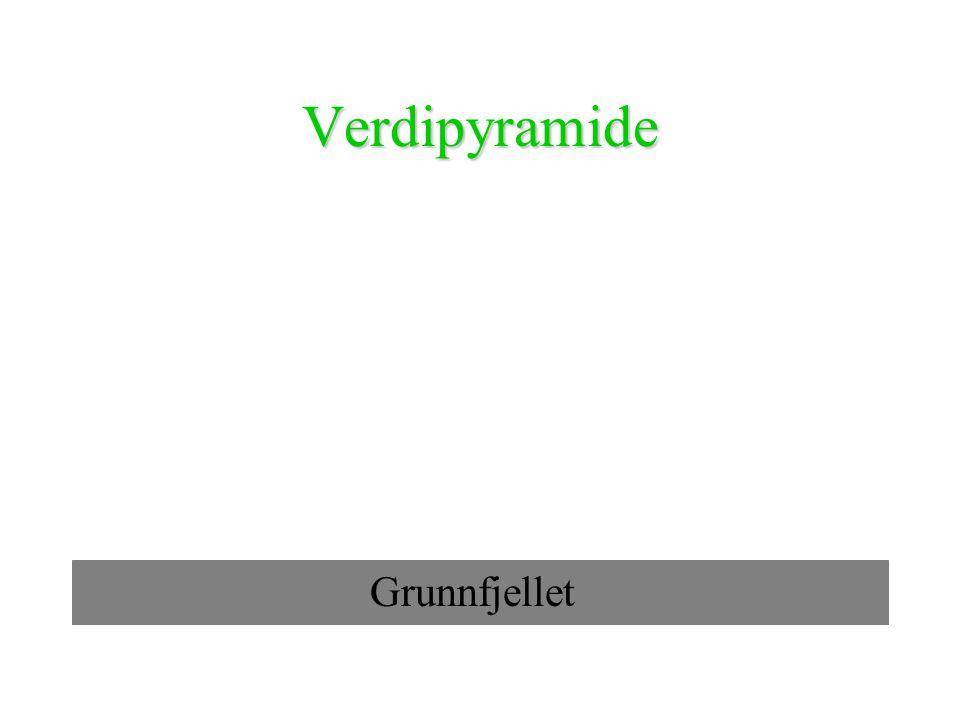 Verdipyramide Grunnfjellet
