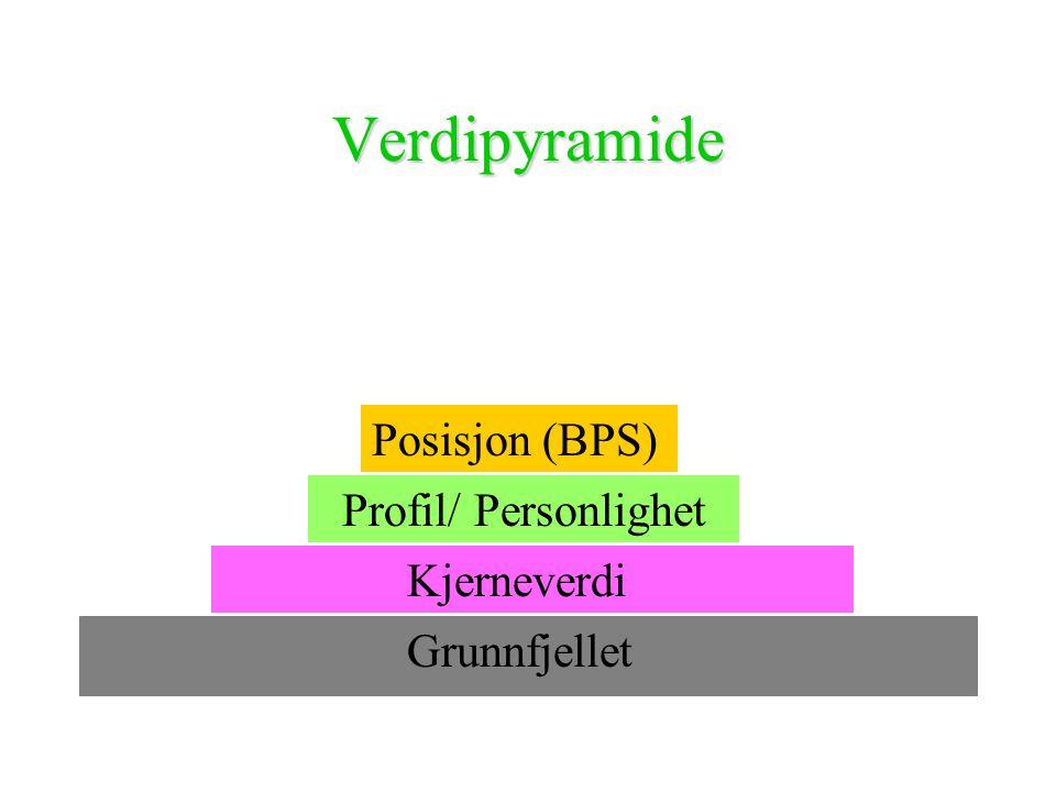 Verdipyramide Grunnfjellet Kjerneverdi Profil/ Personlighet Posisjon (BPS)