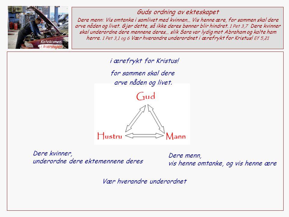 Dere kvinner, underordne dere ektemennene deres Dere menn, vis henne omtanke, og vis henne ære Guds ordning av ekteskapet Dere menn: Vis omtanke i samlivet med kvinnen… Vis henne ære, for sammen skal dere arve nåden og livet.