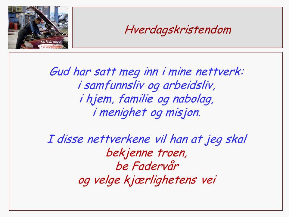 Hverdagskristendom Gud har satt meg inn i mine nettverk: i samfunnsliv og arbeidsliv, i hjem, familie og nabolag, i menighet og misjon.