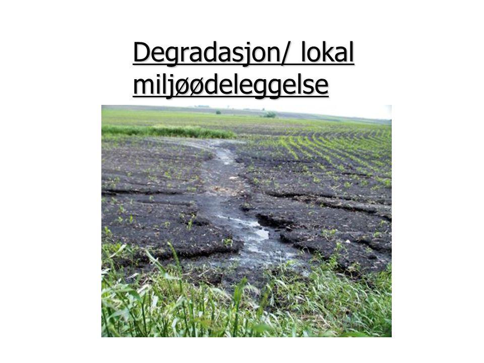 Degradasjon skjer mest i jorden.Jorddegrasjonen kan deles i kjemisk og fysisk jorddegrasjon.