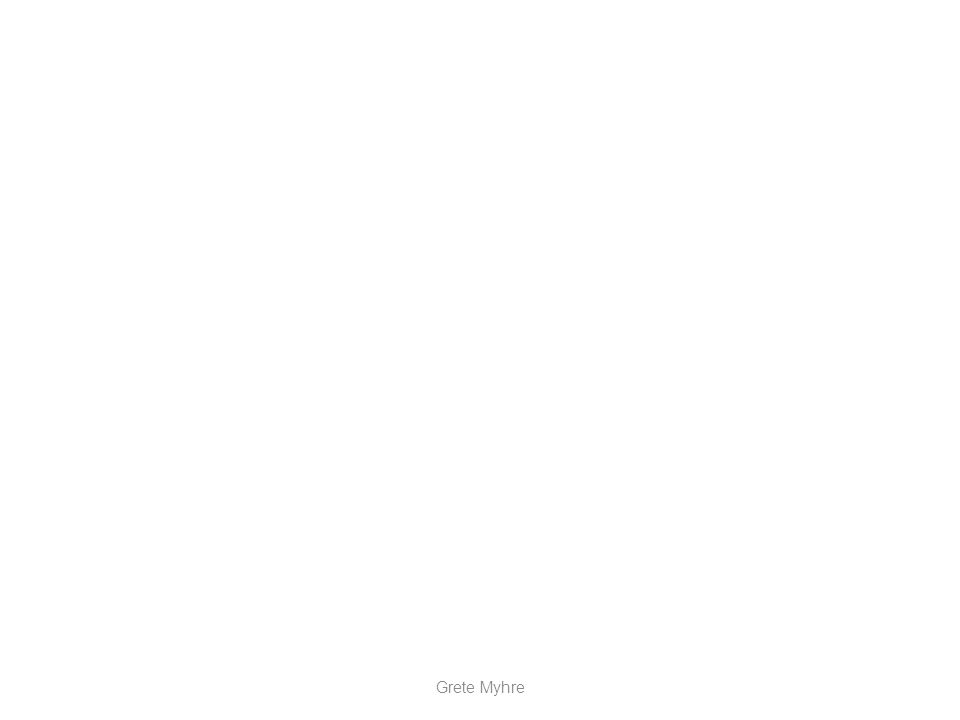 MENNESKELIGE FAKTORER Grete Myhre stimulus reaksjon Endring i omgivelsene Spørsmål stilt Instrument forandringer sansing behand ling Hand ling Redusert effektivitet svar Nedsatt ytelse lagring