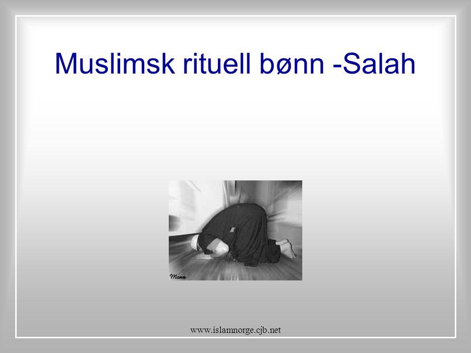 www.islamnorge.cjb.net Muslimsk rituell bønn -Salah