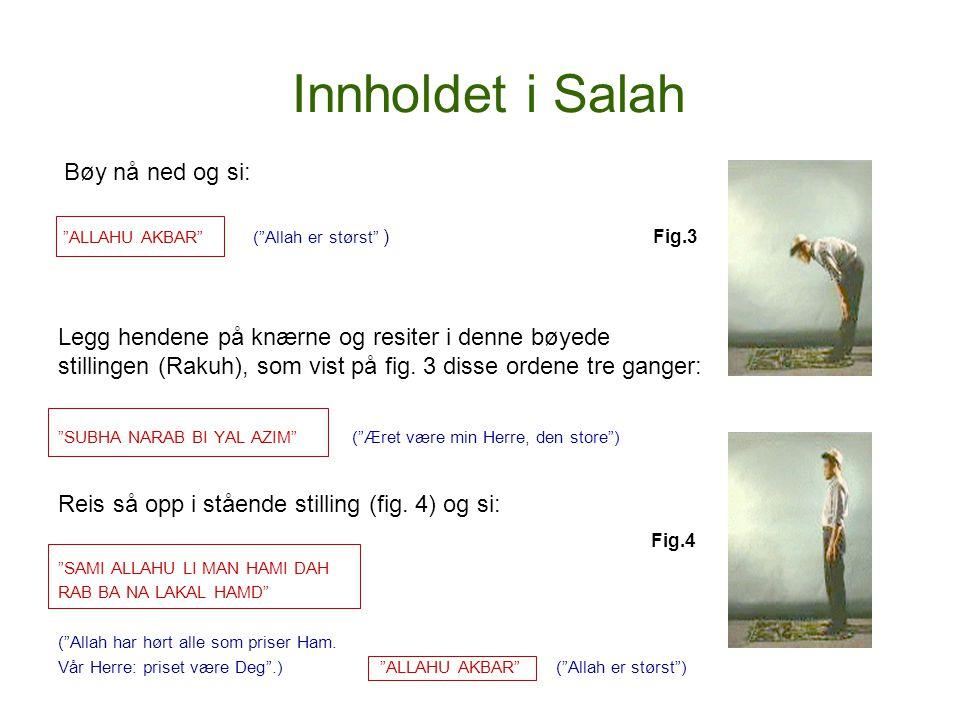 """Innholdet i Salah Bøy nå ned og si: """"ALLAHU AKBAR"""" (""""Allah er størst"""" ) Fig.3 Legg hendene på knærne og resiter i denne bøyede stillingen (Rakuh), som"""