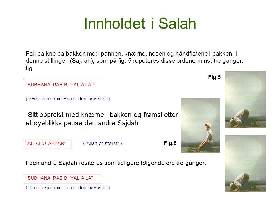 Innholdet i Salah Fall på kne på bakken med pannen, knærne, nesen og håndflatene i bakken. I denne stillingen (Sajdah), som på fig. 5 repeteres disse