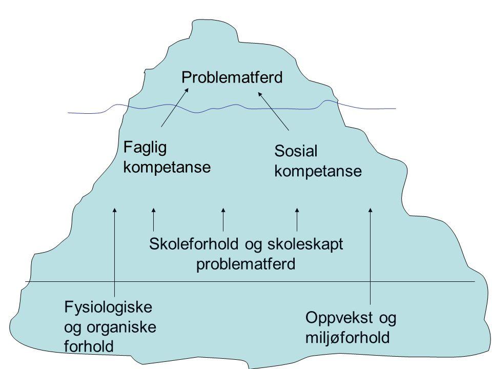 Fysiologiske og organiske forhold Problematferd Faglig kompetanse Sosial kompetanse Skoleforhold og skoleskapt problematferd Oppvekst og miljøforhold