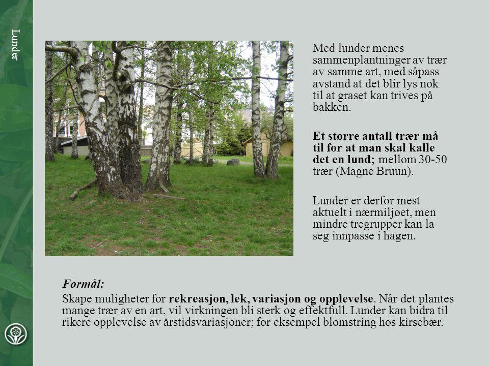 Med lunder menes sammenplantninger av trær av samme art, med såpass avstand at det blir lys nok til at graset kan trives på bakken.