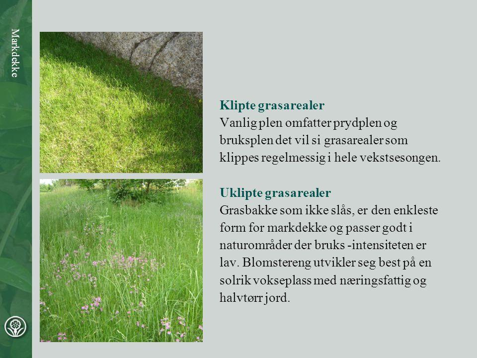 Klipte grasarealer Vanlig plen omfatter prydplen og bruksplen det vil si grasarealer som klippes regelmessig i hele vekstsesongen. Uklipte grasarealer