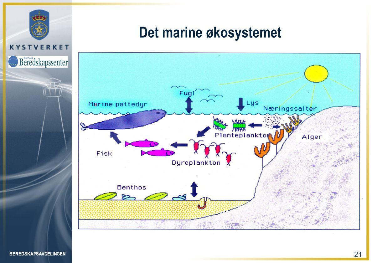 BEREDSKAPSAVDELINGEN 21 Det marine økosystemet