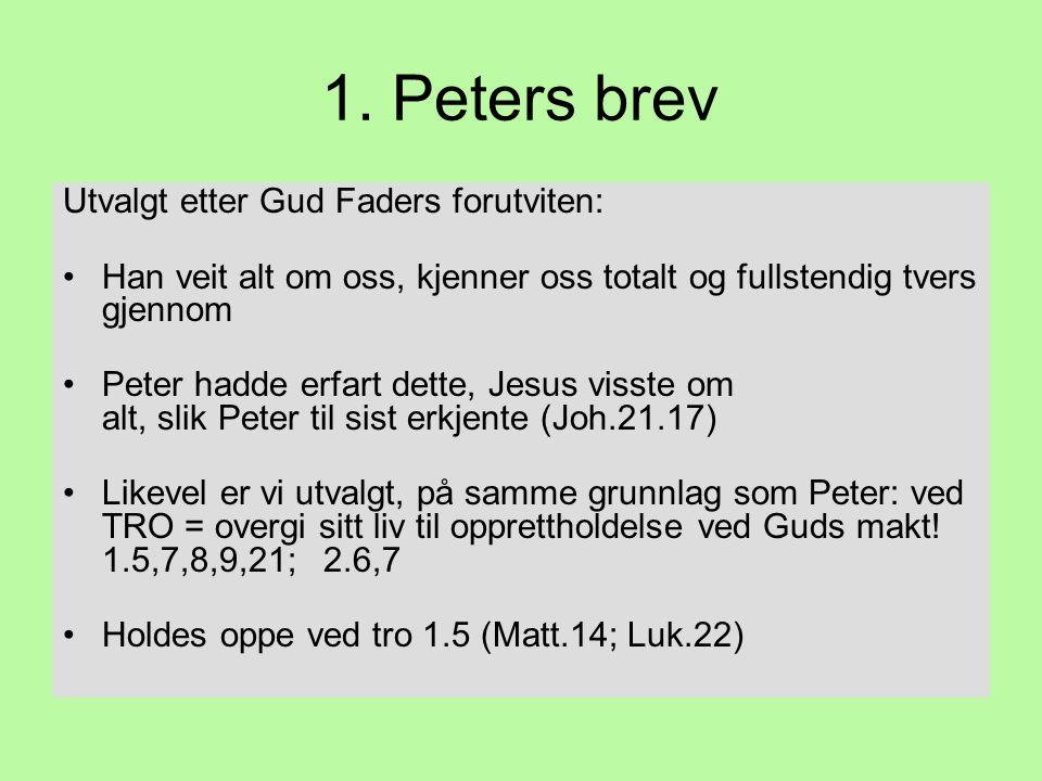1. Peters brev Utvalgt etter Gud Faders forutviten: •Han veit alt om oss, kjenner oss totalt og fullstendig tvers gjennom •Peter hadde erfart dette, J