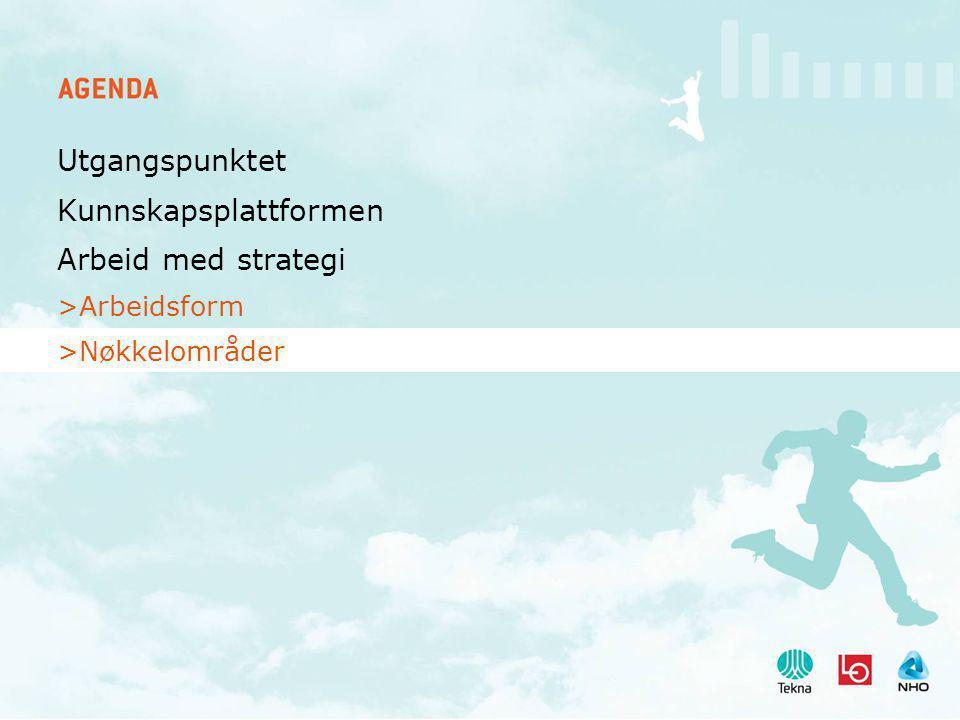 Utgangspunktet Kunnskapsplattformen Arbeid med strategi >Arbeidsform >Nøkkelområder