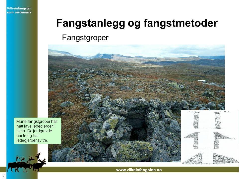 Villreinfangsten som verdensarv www.villreinfangsten.no Fangstanlegg og fangstmetoder Fangstgroper Murte fangstgroper har hatt lave ledegjerder i stein.