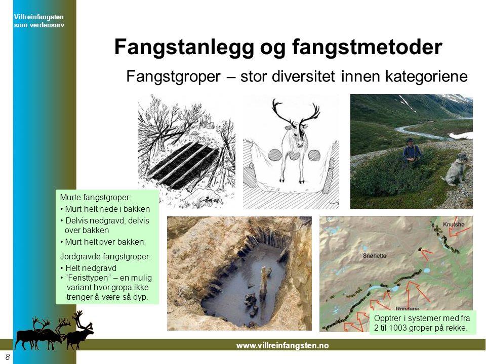 Villreinfangsten som verdensarv www.villreinfangsten.no Fangstanlegg og fangstmetoder Fangstgroper – stor diversitet innen kategoriene Opptrer i systemer med fra 2 til 1003 groper på rekke.