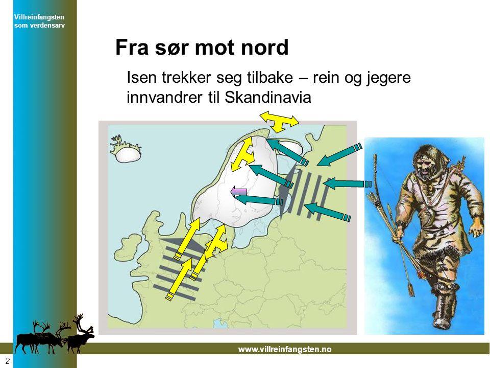 Villreinfangsten som verdensarv www.villreinfangsten.no Fra sør mot nord Isen trekker seg tilbake – rein og jegere innvandrer til Skandinavia 2