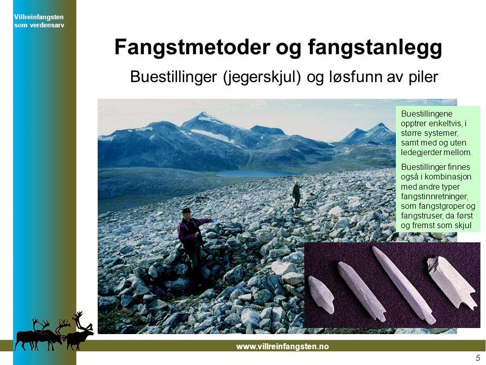 Villreinfangsten som verdensarv www.villreinfangsten.no Fangstmetoder og fangstanlegg Buestillinger (jegerskjul) og løsfunn av piler Buestillingene op