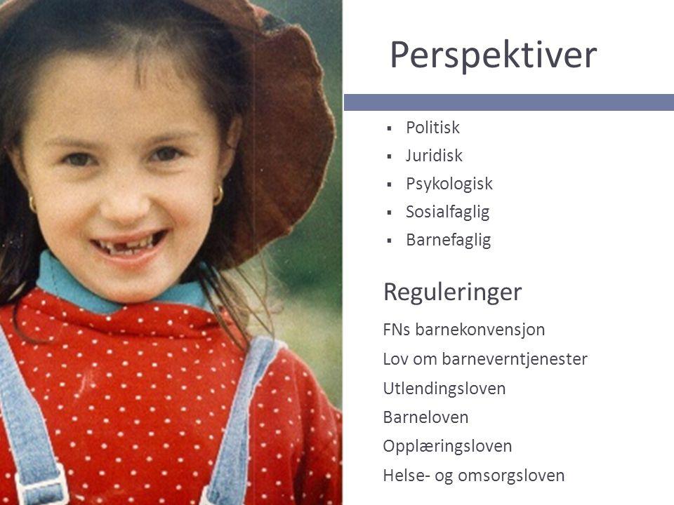 Sentrale tema  Bo- og omsorgsløsninger  Skole og utdanning  Kultur og fritid  Psykososialt arbeid  Reetablering av kontakt med foreldre og hjemland