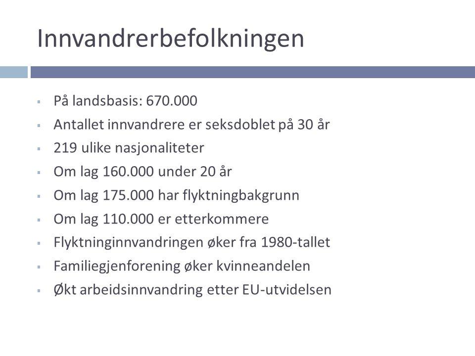 En stein i elva 2002: Trondheim kommune beslutter å sette i verk strakstiltak for 10 navngitte minoritetsungdommer med asosial atferd.