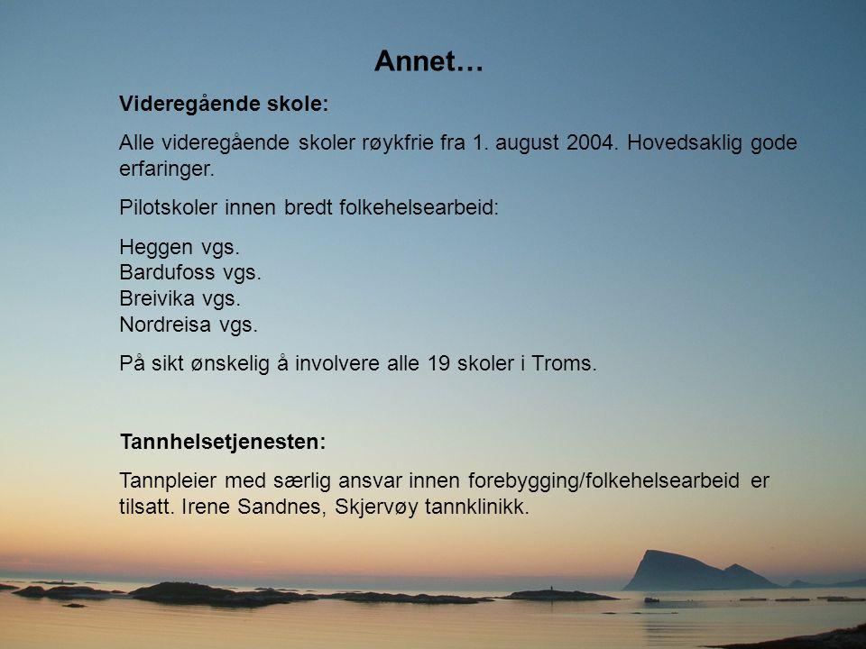 Annet… Videregående skole: Alle videregående skoler røykfrie fra 1. august 2004. Hovedsaklig gode erfaringer. Pilotskoler innen bredt folkehelsearbeid
