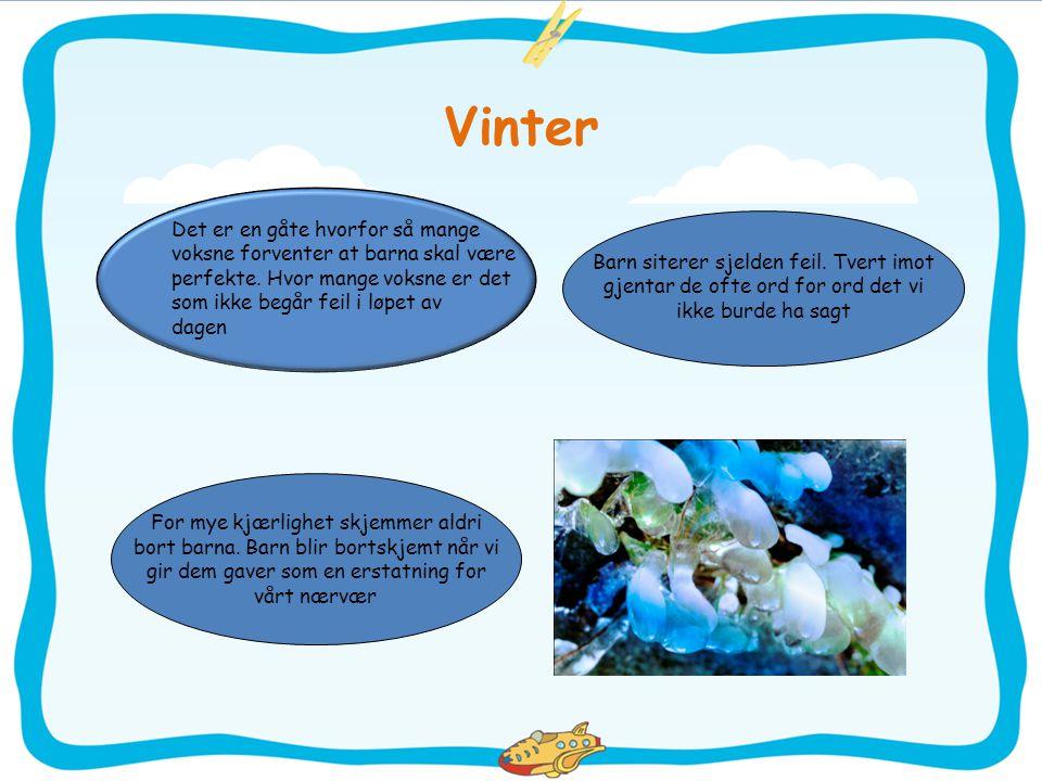 Vinter Det er en gåte hvorfor så mange voksne forventer at barna skal være perfekte. Hvor mange voksne er det som ikke begår feil i løpet av dagen Bar
