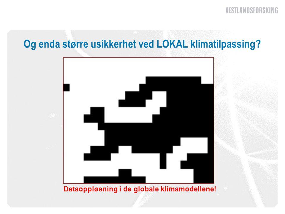 Og enda større usikkerhet ved LOKAL klimatilpassing Dataoppløsning i de globale klimamodellene!