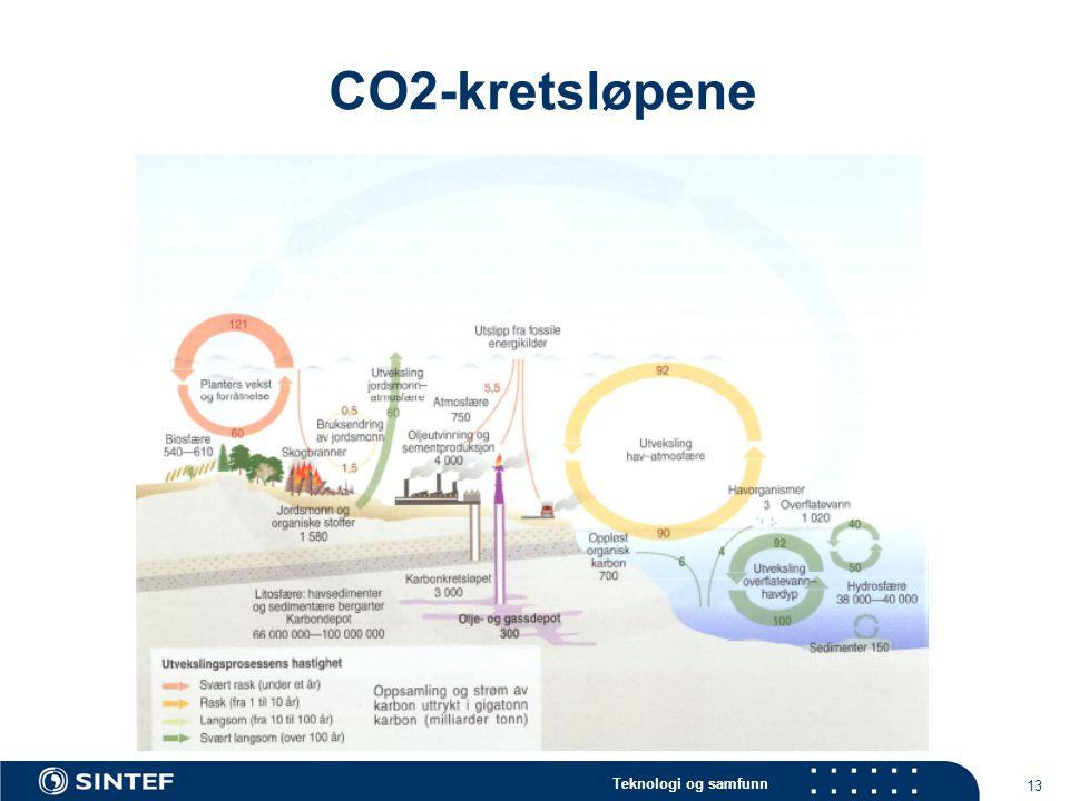 Teknologi og samfunn 13 CO2-kretsløpene