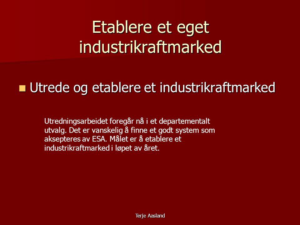 Terje Aasland Etablere et eget industrikraftmarked  Utrede og etablere et industrikraftmarked Utredningsarbeidet foregår nå i et departementalt utvalg.