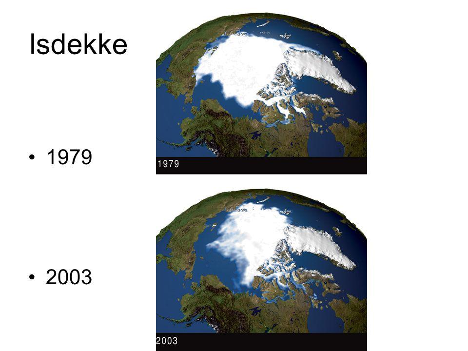 Isdekke •1979 •2003