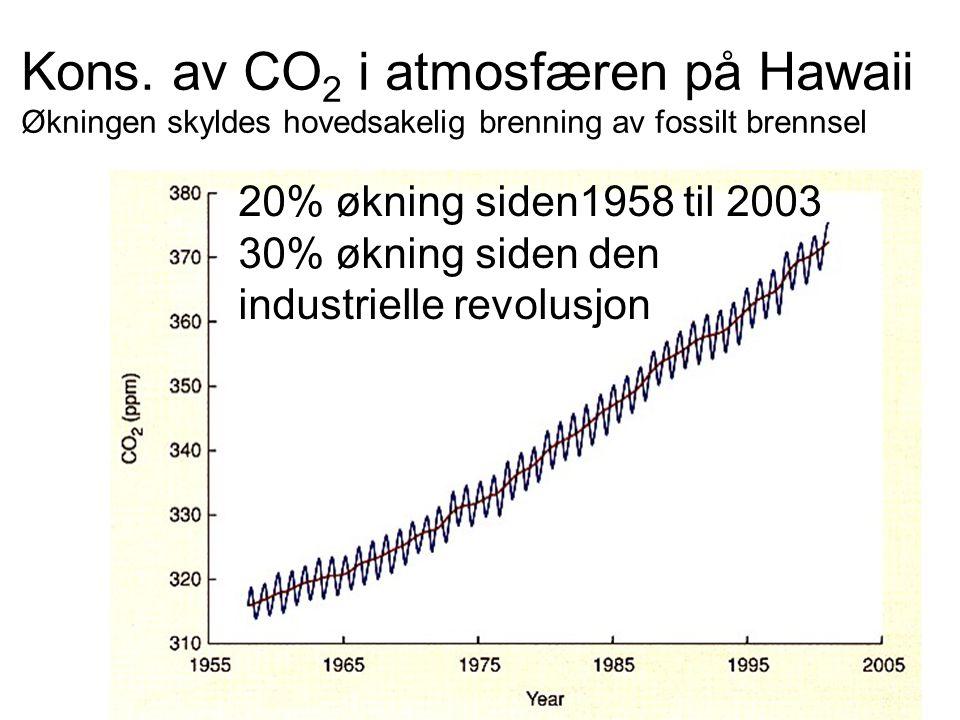 Kons. av CO 2 i atmosfæren på Hawaii Økningen skyldes hovedsakelig brenning av fossilt brennsel 20% økning siden1958 til 2003 30% økning siden den ind