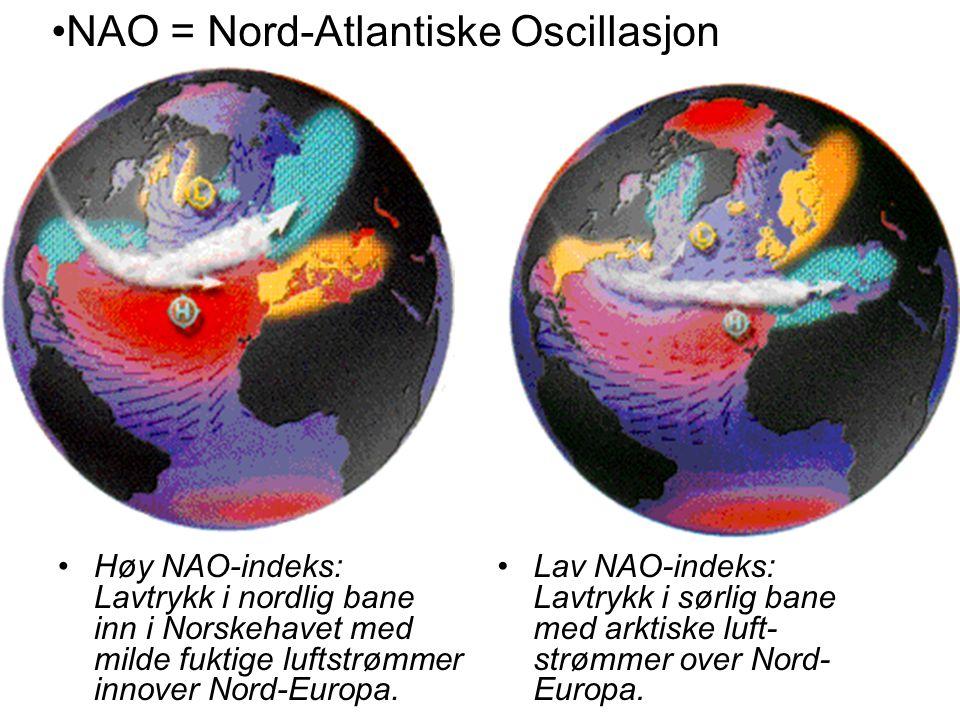 •Høy NAO-indeks: Lavtrykk i nordlig bane inn i Norskehavet med milde fuktige luftstrømmer innover Nord-Europa. •Lav NAO-indeks: Lavtrykk i sørlig bane