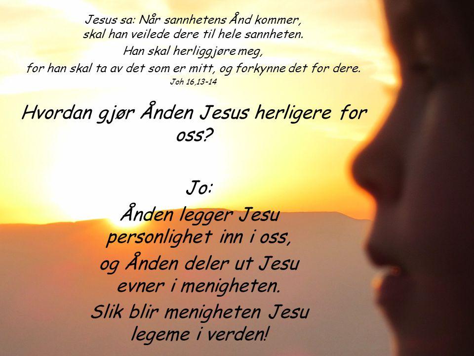 Jesus sa: Når sannhetens Ånd kommer, skal han veilede dere til hele sannheten.