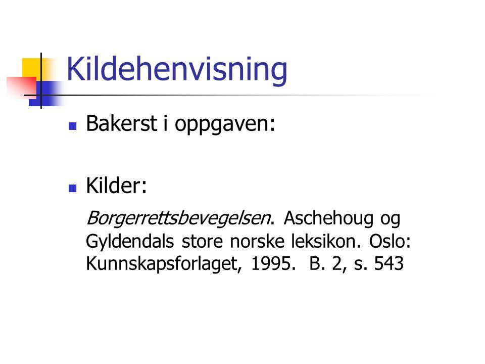 Kildehenvisning  Bakerst i oppgaven:  Kilder: Borgerrettsbevegelsen. Aschehoug og Gyldendals store norske leksikon. Oslo: Kunnskapsforlaget, 1995. B