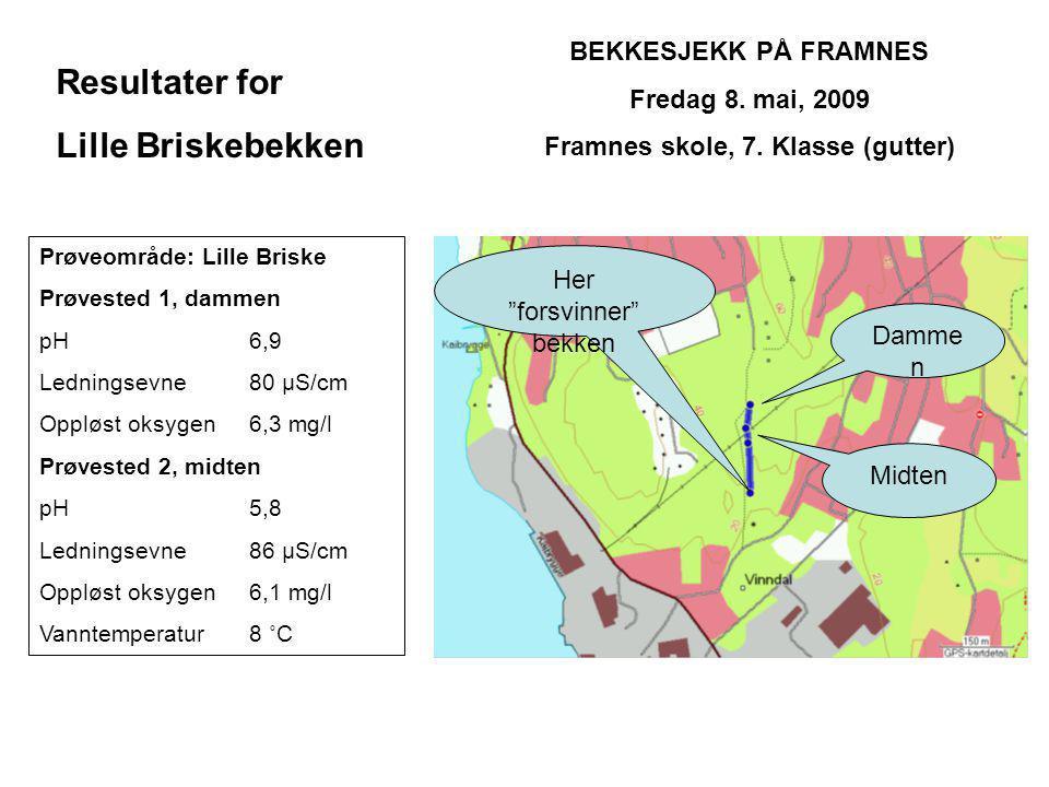 BEKKESJEKK PÅ FRAMNES Fredag 8.mai, 2009 Framnes skole, 7.