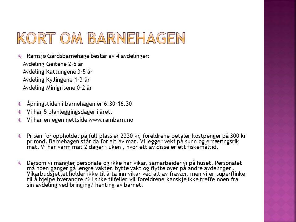  Ramsjø Gårdsbarnehage består av 4 avdelinger: Avdeling Geitene 2-5 år Avdeling Kattungene 3-5 år Avdeling Kyllingene 1-3 år Avdeling Minigrisene 0-2