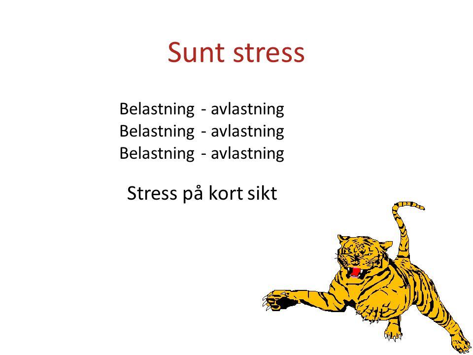 Stress på kort sikt Belastning - avlastning Sunt stress