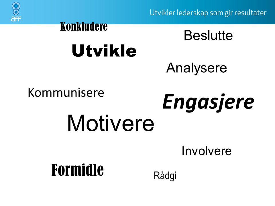 Utvikle Motivere Involvere Formidle Rådgi Beslutte Analysere Kommunisere Konkludere Engasjere