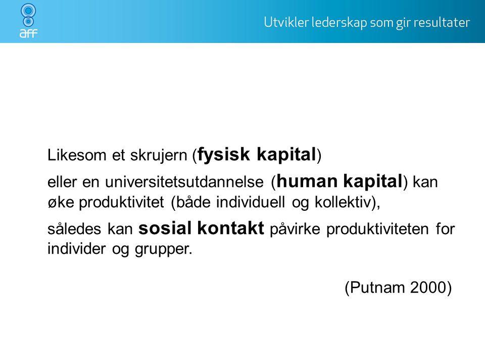 Likesom et skrujern ( fysisk kapital ) eller en universitetsutdannelse ( human kapital ) kan øke produktivitet (både individuell og kollektiv), sålede