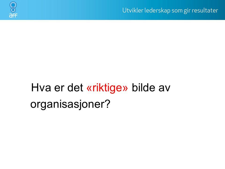 Hva er det «riktige» bilde av organisasjoner? organisasjonen ?