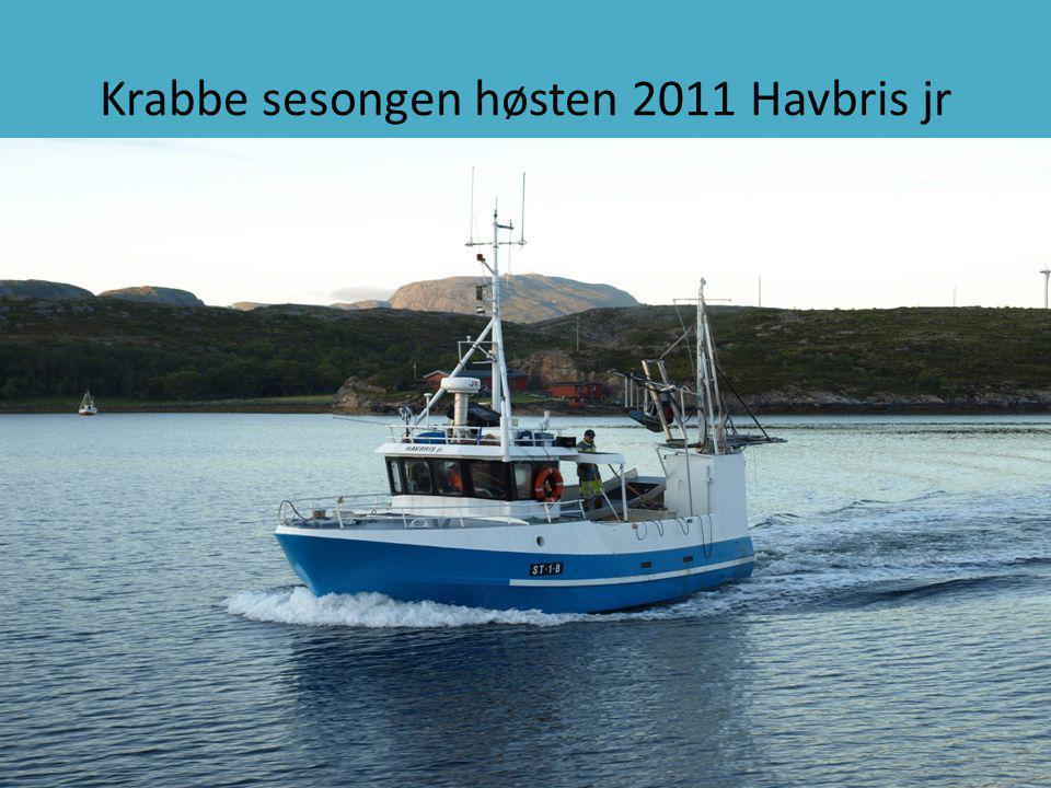 Krabbe sesongen høsten 2011 Havbris jr