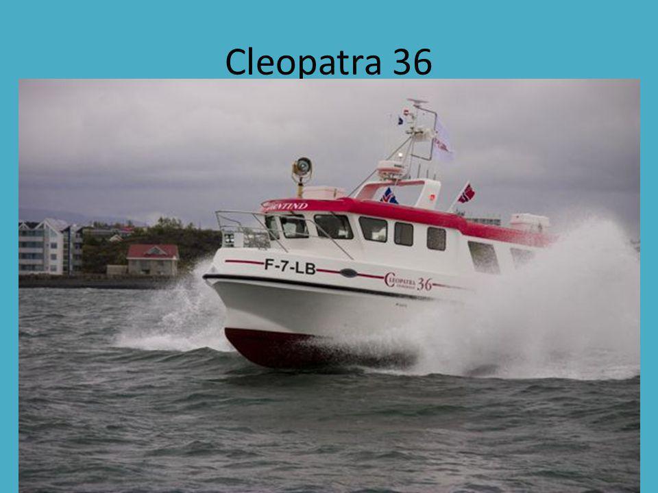 Cleopatra 36