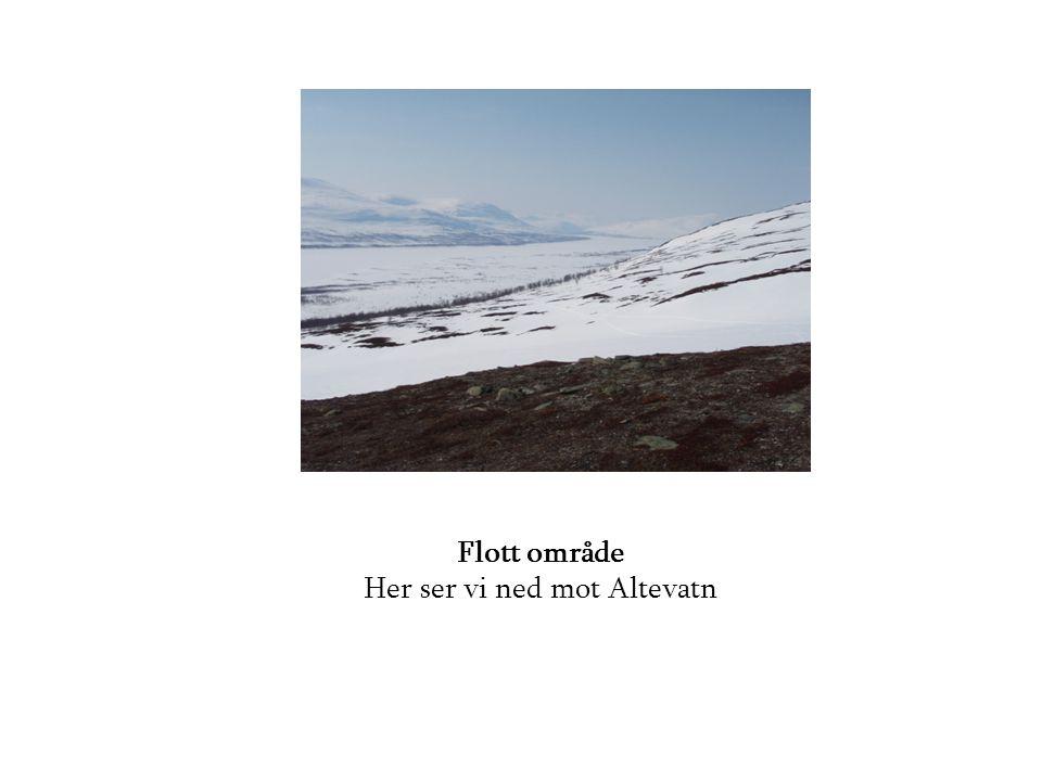 Utsikt som gir fred i sjela Altevatn med Rohkunborri i bakgrunnen