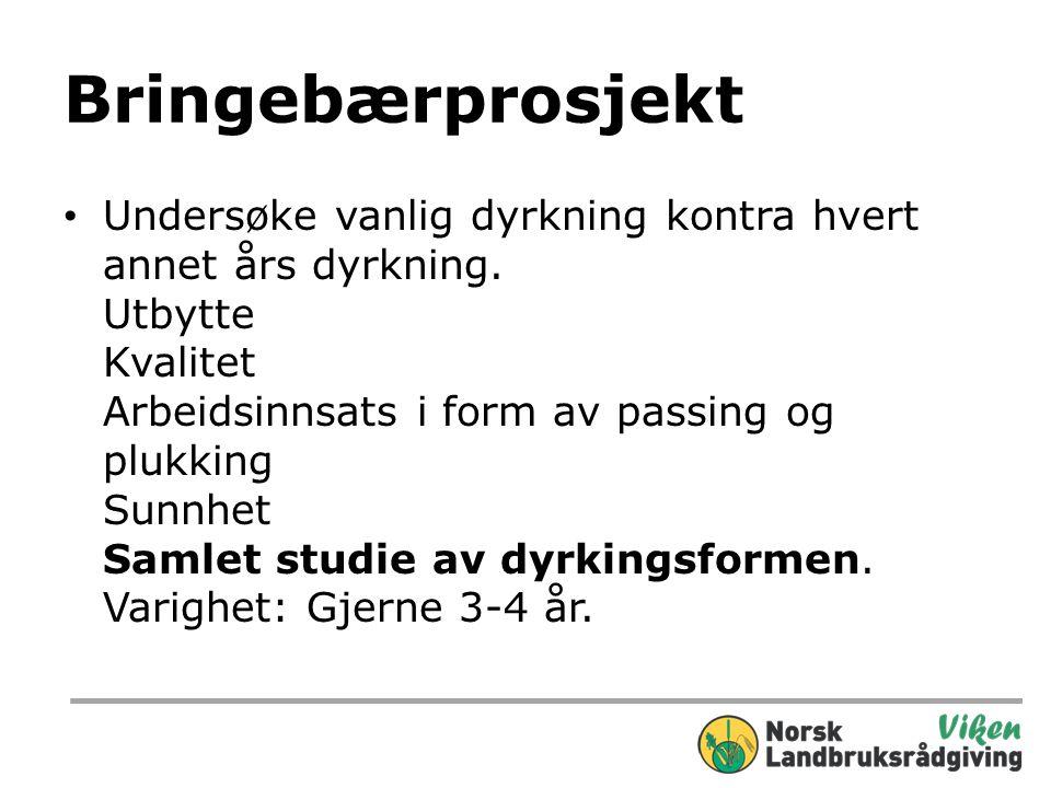 Arrangementer • Bærseminar i Drammen 2013 Blir sannsynligvis 4-5.